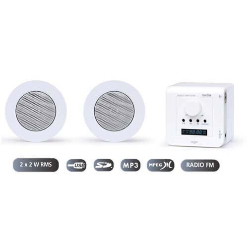CONJUNTO DE AMPLIFICADOR DE PARED Y ALTAVOCES